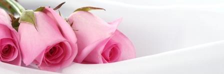 Arnold Wilbert Burial Vault Legacy Personalization: Pink roses